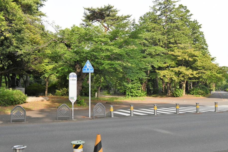 反対側バス停