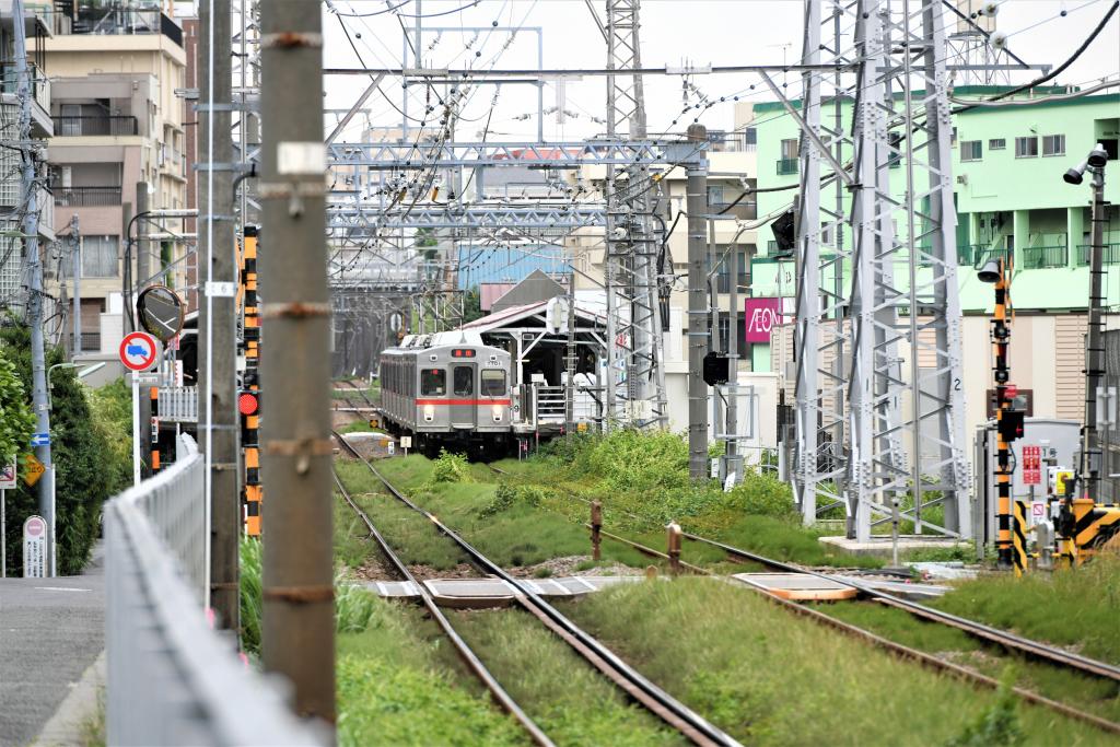 東急7700系 7901F 1