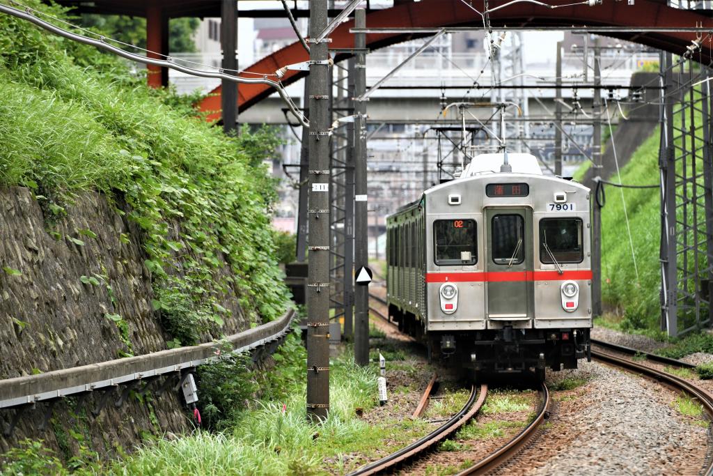 東急7700系 7901F 4