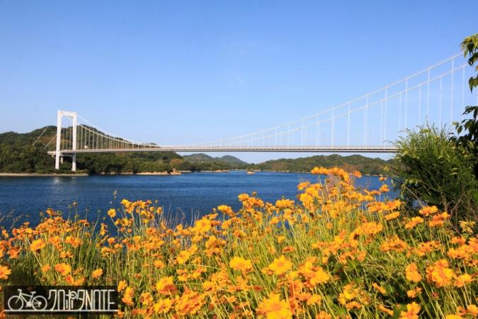 花と大島大橋