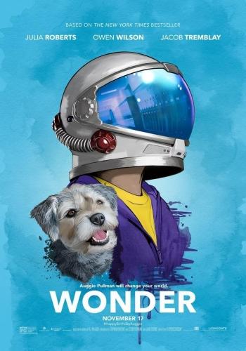 wonder-294892482-large.jpg