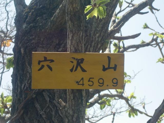 CIMG1258.jpg