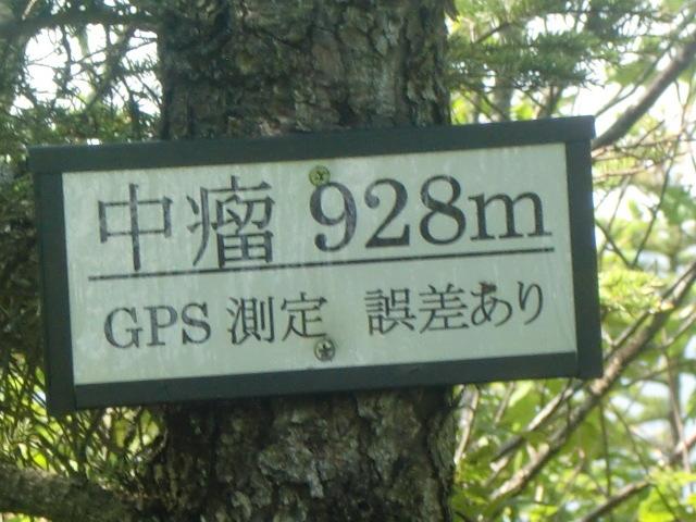 CIMG2059.jpg