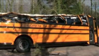 【衝撃!】スクールバスに木が落ちてペシャンコ・・・奇跡!