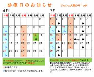 診療日カレンダー(2018年6-7月)