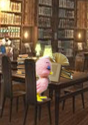 図書館アップa