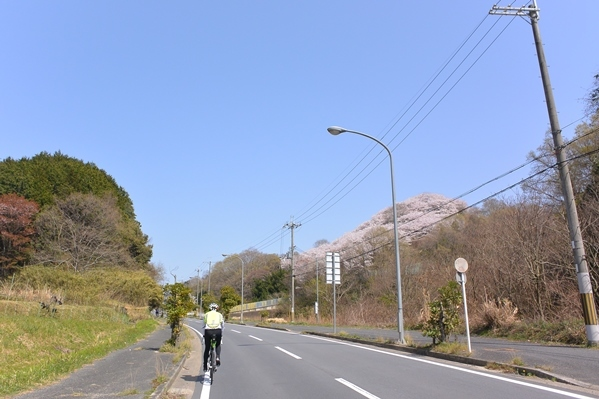 DSC_2138.jpg