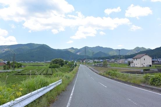 DSC_2528.jpg