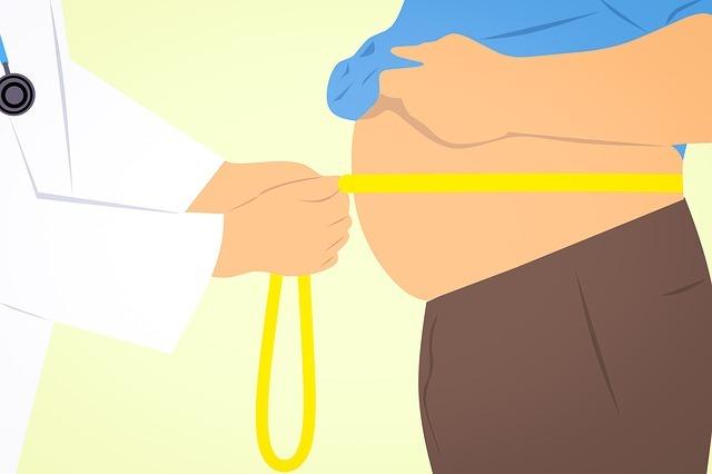 obese-3011213_640.jpg