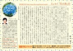 201807ajisai.jpg