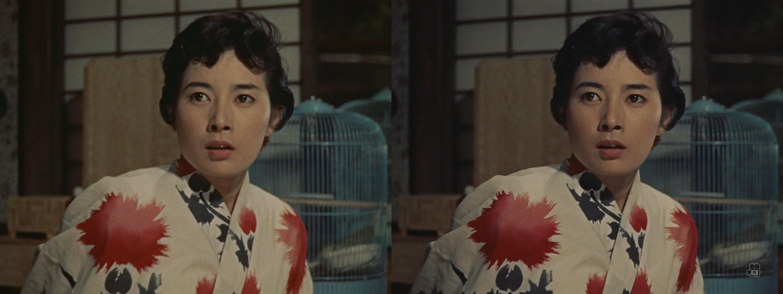 おキヨちゃん(画面左BD/画面右日専)