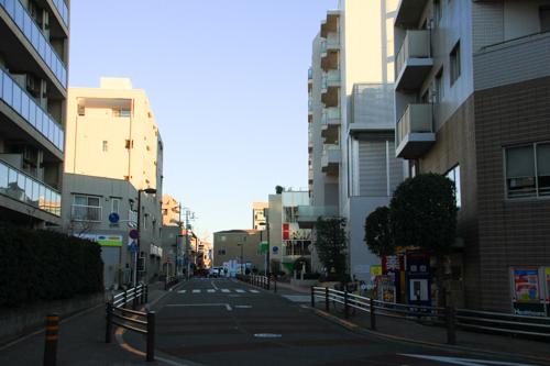 IMG_2531-2.jpg