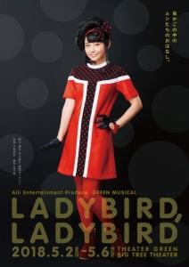 ladybird18_front.jpg