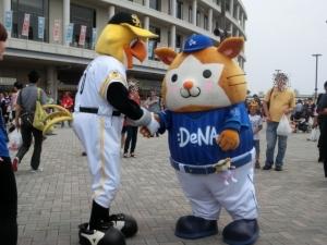 また福岡に行けないかなあ。