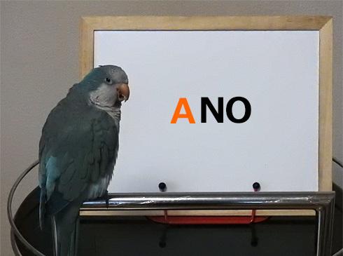 foo_no1_2
