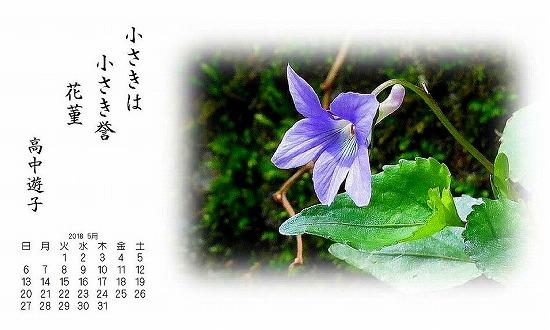 yu478.jpg