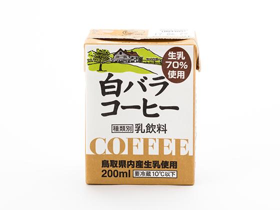 shirobara.jpg