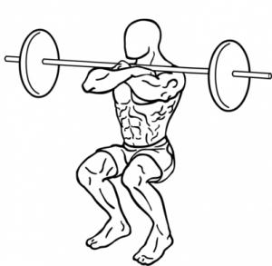 402px-Front-squat-2-857x1024.png