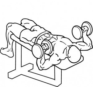 511px-Decline-dumbbell-bench-press-2_2018052708532205b.png