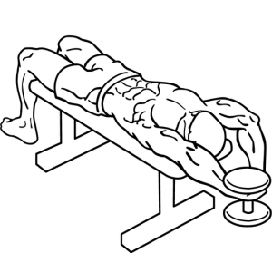 Dumbbell-bent-arm-pullover-2-300x279.png