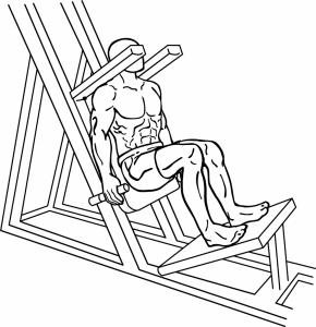 Lying-squat-1-990x1024-290x300.png