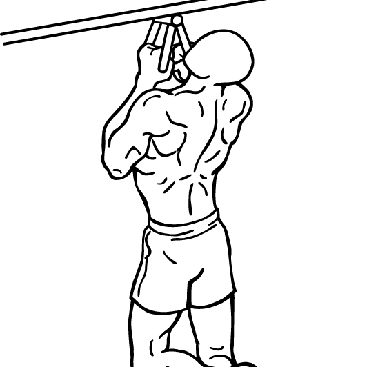 narrow-parallel-grip-chin-ups-1-crop_20180414205230efe.png