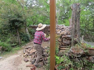 薪が散乱ー2