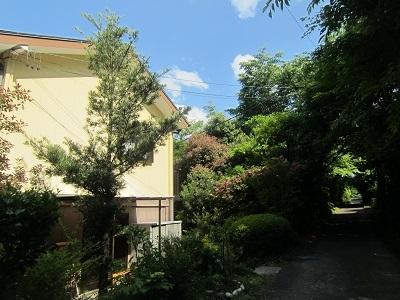 中井家-2