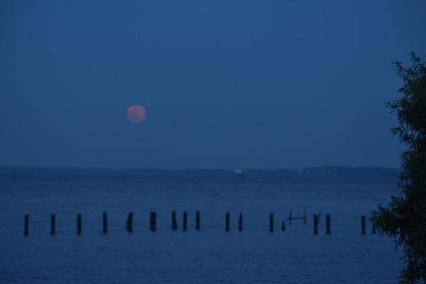 6月28日の満月を霞ヶ浦に見にいく