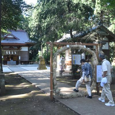 夏越大祓えで茅の輪潜り(6月30日、利根町蛟蝄神社)