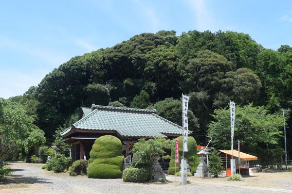 富士浅間神社社殿、後背のこんもりした森が神山になっている