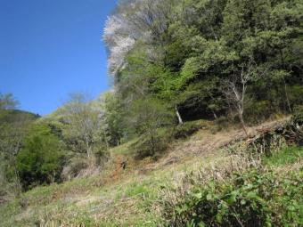 煤ケ谷から登り始める180408