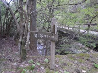 谷太郎林道煤ケ谷への道180408