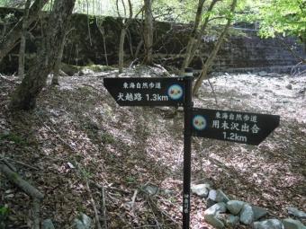 この辺から登山道勾配がキツクナル180421