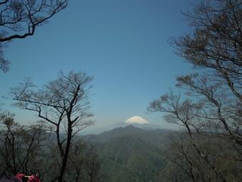 犬越路から大室山への道富士山ばっちり180421