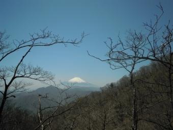 左手に富士山展望の良い尾根道180421