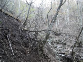 白石峠から降りる沢沢の端に木道が出来ている180421
