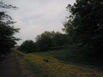 多摩川サイクリングロードに入る180430