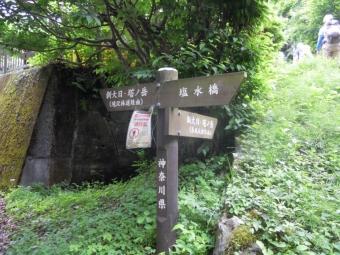 丹沢ホーム横登山口180519