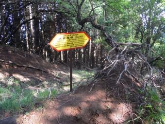 大倉から塔の岳までの道標180519