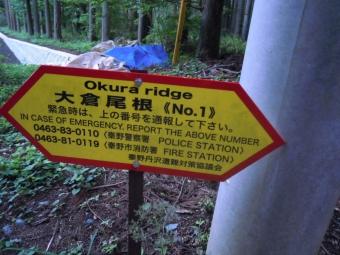 大倉塔の岳へNO1180519