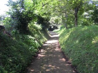 以前頭神山に行く時通った道か180625