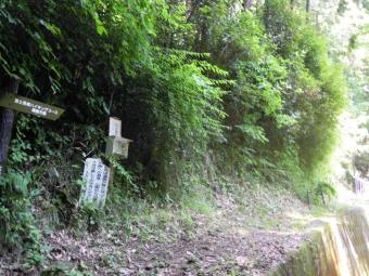 篠窪方面へのハイキングコース、通れるのか?180625