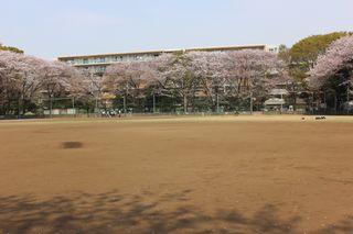 20180402薬円台公園