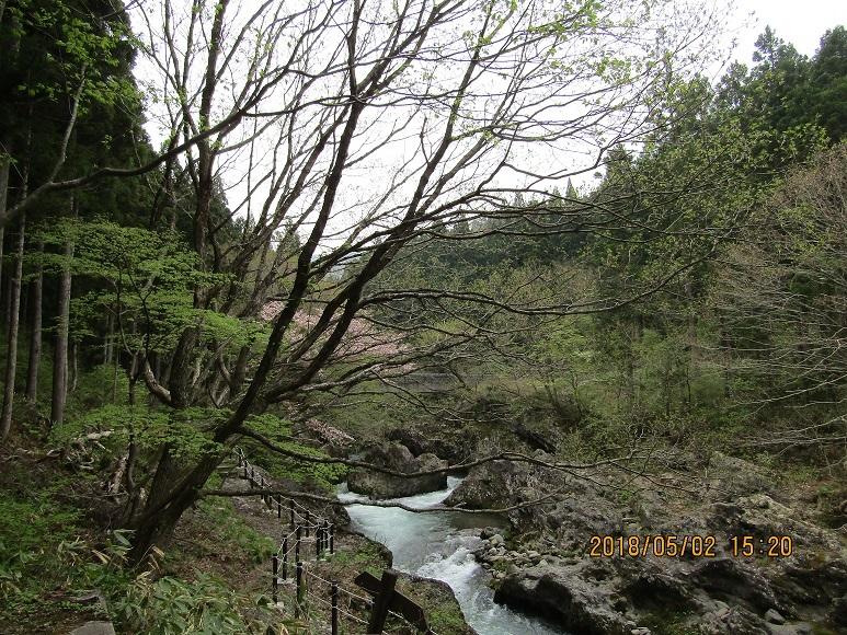 20118真瀬川2