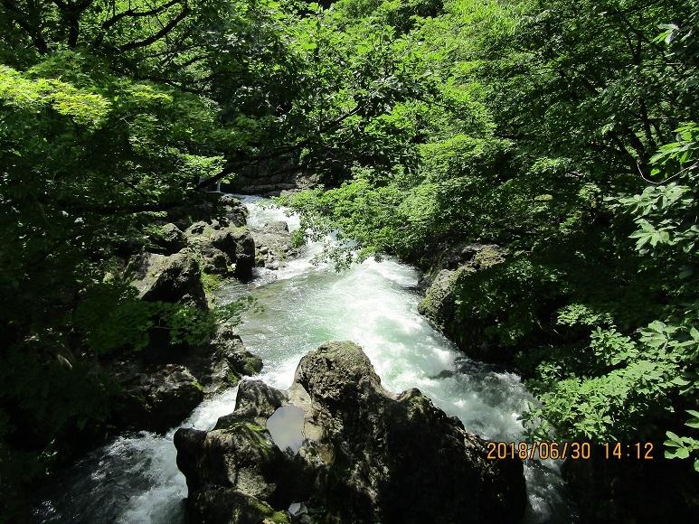 真瀬川18