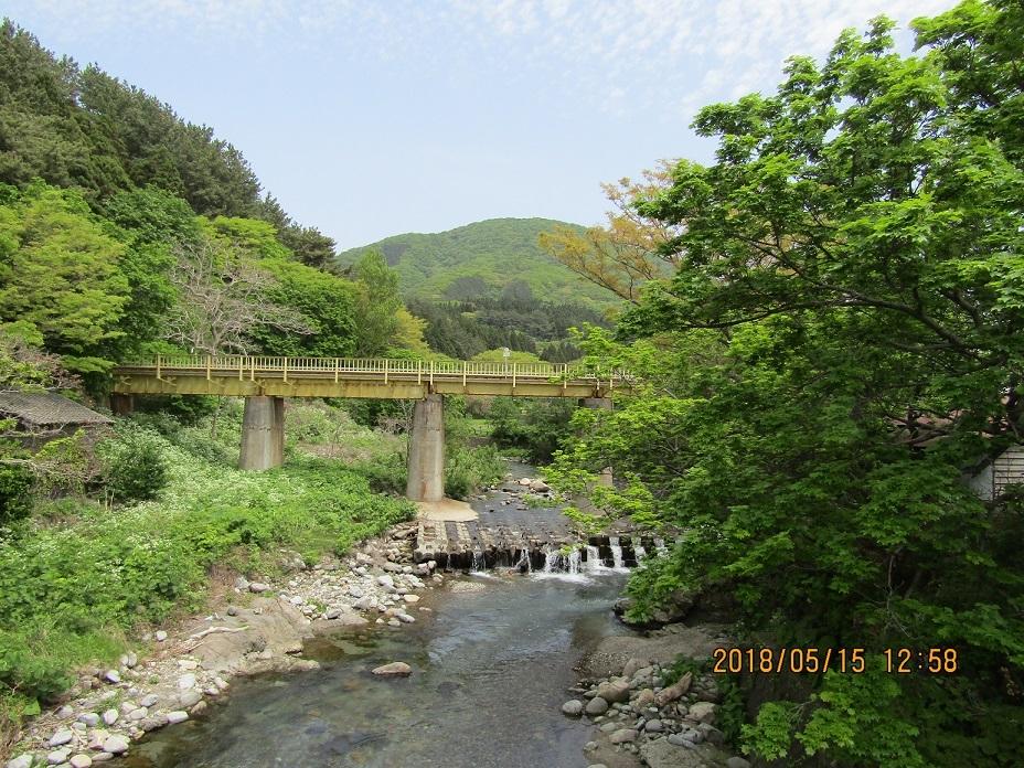 緑の中の鉄橋。