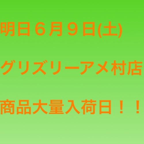 fc2blog_2018060811475155c.jpg