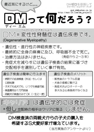 DMチラシ白黒13_B5
