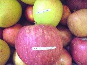 訳ありりんご2